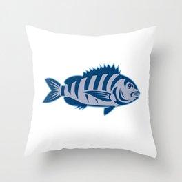 Sheepshead Fish Isolated Retro Throw Pillow