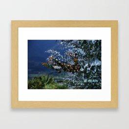 Decorative Eucalyptus Framed Art Print