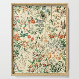 Flower Diagram // Fleurs V by Adolphe Millot XL 19th Century French Science Textbook Artwork Serving Tray