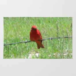 Red Summer Tanager on Barbed Wire Fence Rug