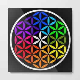 Secret flower of life Metal Print