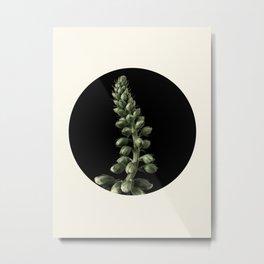 Blooming Plant Metal Print