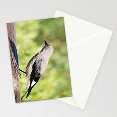 Sunny Day Stationery Cards