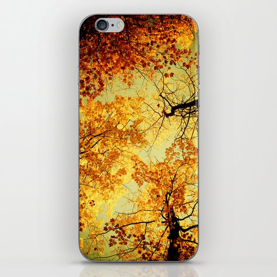 We Are Starlight, We Are Golden iPhone & iPod Skin
