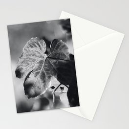 Autumn Grape Leaf in Black and White Stationery Cards