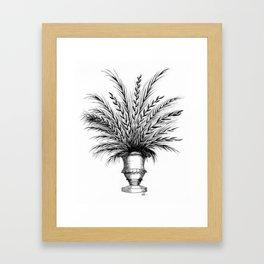 Ferns in Urns Framed Art Print