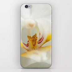 Looking into the Orchid iPhone & iPod Skin