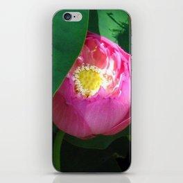 peeking through iPhone Skin