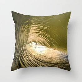 Variation Throw Pillow