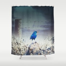 Free! Shower Curtain