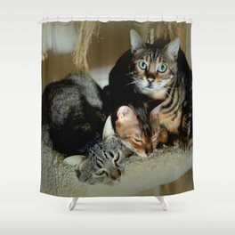 Three Close For Comfort Shower Curtain
