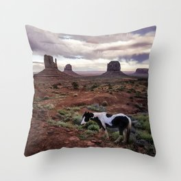 Horse in the Valley Throw Pillow