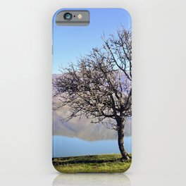 Tree Divided iPhone Case