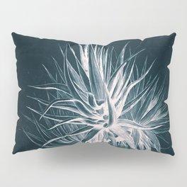 Cyanotype - Aloe Socotrina Pillow Sham