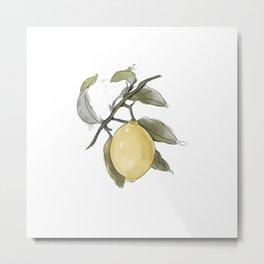 Original Lemon Watercolor Painting, Fruit watercolor Metal Print