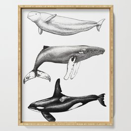Beluga, humpback whale and orca killer whale Serving Tray