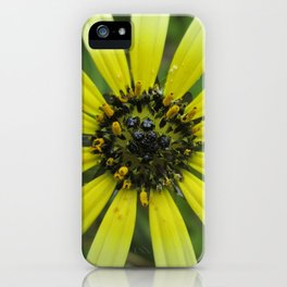 Ombre Daisy iPhone Case