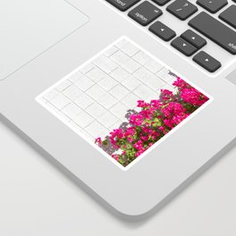 Bougainvilleas and White Brick Wall in Palm Springs, California Sticker