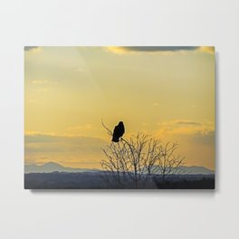 Crow's Eye View from Portland, Maine Metal Print