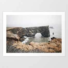 Northwest Coast Art Print