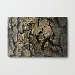Bark 1 Metal Print