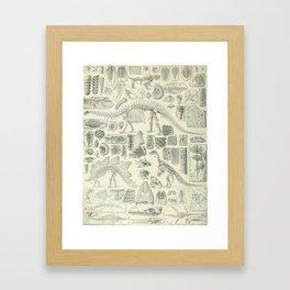 Fossil Chart Framed Art Print