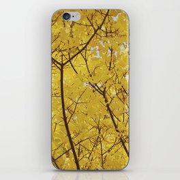 Colorado Autumn in Yellow iPhone Skin
