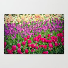 Fields of Color I, Woodburn Tulip Festival Canvas Print