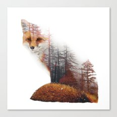 Misty Fox Canvas Print