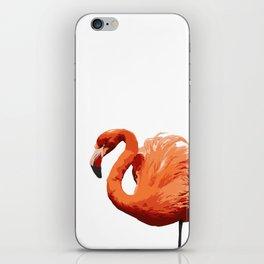 Mean Flamingo iPhone Skin