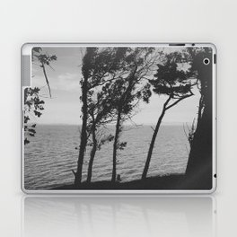 WILD (B+W) Laptop & iPad Skin