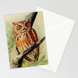 Vintage Illustration of an Owl (1912) Stationery Cards