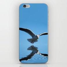 Seagull on blue sky iPhone & iPod Skin