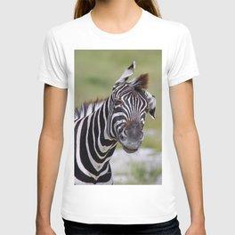 Shaking Zebra, Africa wildlife T-shirt