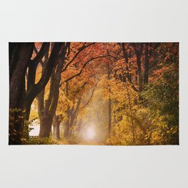 Autumn Fall Forest Path -  Nature Landscape Photography Rug