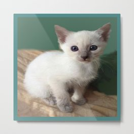Am I Adorable? Or What? Metal Print