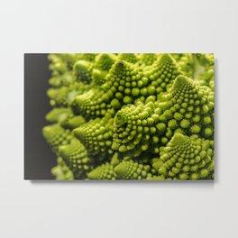 romanesco sprouts Metal Print