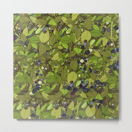 Blueberry Bushes Metal Print