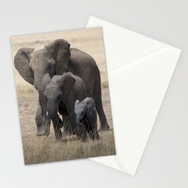 Generations Stationery Cards