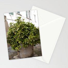 Inne yard Stationery Cards
