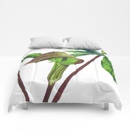 Jack Comforters