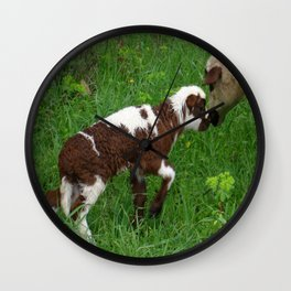 Cute Brown and White Lamb with Ewe  Wall Clock