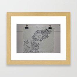 Illustration 2.4 Framed Art Print
