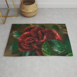Rose Flower Printable Wall Art | Floral Plant Botanical Nature Outdoors Macro Photography Print Rug