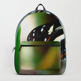Doris Longwing Butterfly-2 Backpack