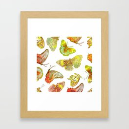 Butterfly Obsession Framed Art Print