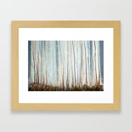 Earth Glow Framed Art Print