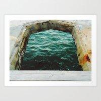 A Look Into The Sea Art Print