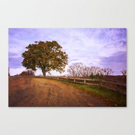 Tree By the Overlook Canvas Print