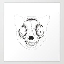 Skull Cat Art Print